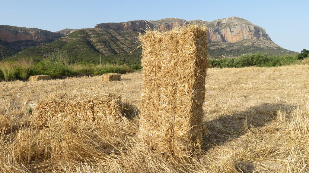 Bales de palla al Baix Montgó